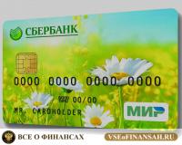 Платежная карта МИР от Сбербанка