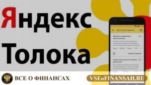Яндекс Толока сколько можно заработать