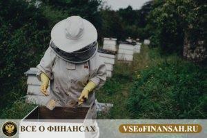 Как заработать деньги в деревне