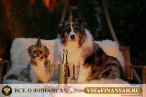 Как встретить Новый Год, чтобы сделать его финансово удачным